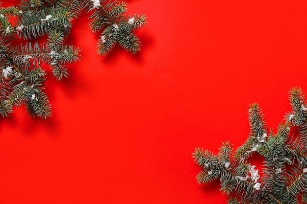 色の背景に美しいクリスマスツリーの枝