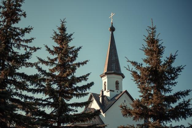 Красивая церковь среди высоких елей в солнечный день.
