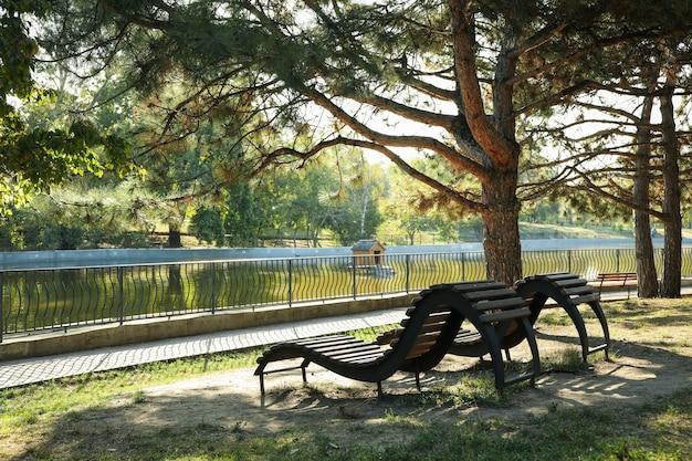 晴れた朝に湖とサンベッドのある美しい都市公園