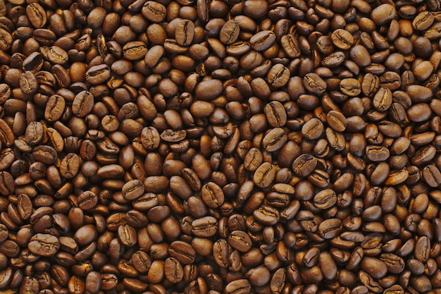 Bello colpo del primo piano dei chicchi di caffè neri freschi marroni