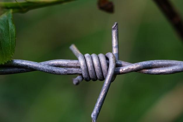 Bello colpo del primo piano di un filo spinato grigio
