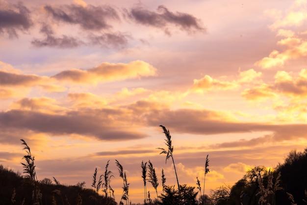 朝または夕方の美しい曇り空
