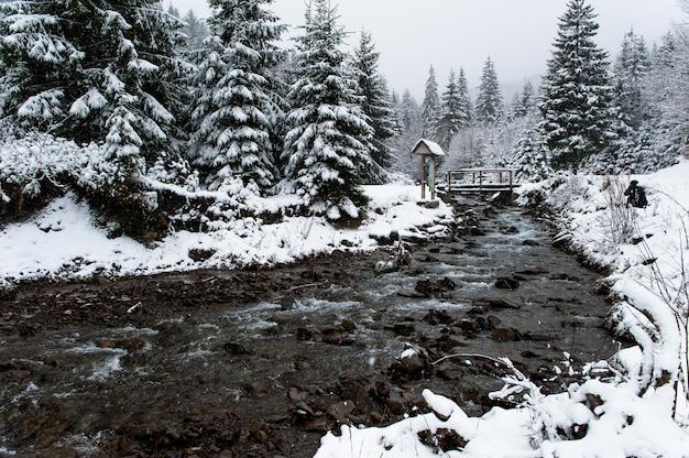 山のカルパティア山脈の美しい曇りの冬の風景