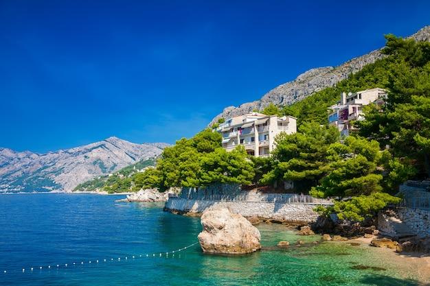 Красивая береговая линия с зелеными соснами в бреле, макарская ривьера, хорватия