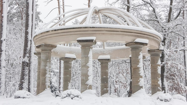 Beautiful colonnade in the snowy park, bucha ukraine winter fresh morning