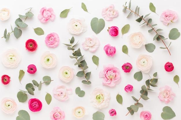 Красивые цветные лютик цветы на белом фоне. весенняя открытка.