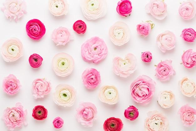 Красивые цветные цветы лютик на белом фоне. весенняя поздравительная открытка.