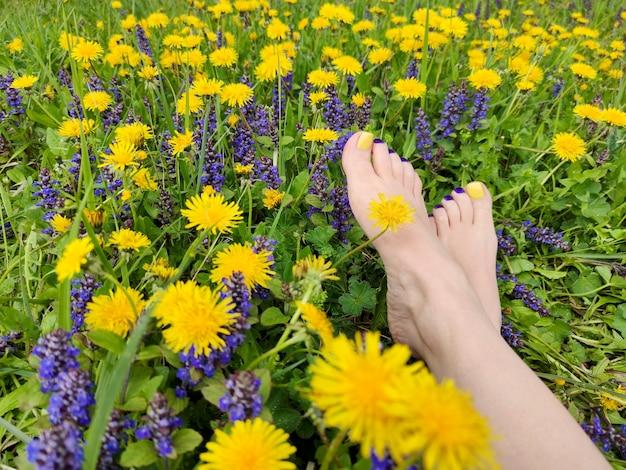 フィールドにさまざまな夏の花を持つ女性の足に美しい色の黄色、青、紫のペディキュア。