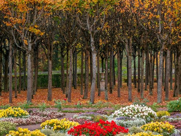 화단과 나무 행 아름 다운 화려한가 공원.