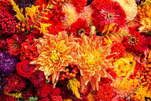 美しいカラフルな秋の花の背景アスターカーネーションとバラの花の上面図