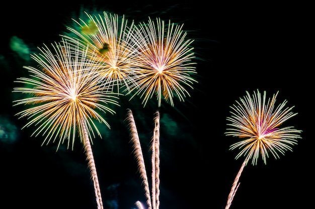 Beautiful colorful firework display at night for celebrate