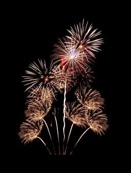 夜に爆発する美しい色とりどりの花火