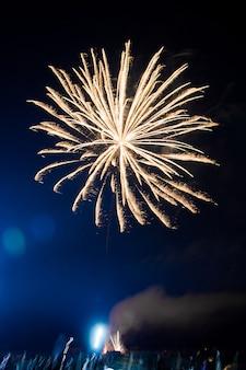 Красивый красочный фейерверк в небе в праздничную ночь. вертикальное фото