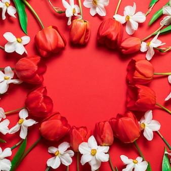 美しい色とりどりのチューリップと赤の背景に水仙。春の花と幸せな母の日グリーティングカード。