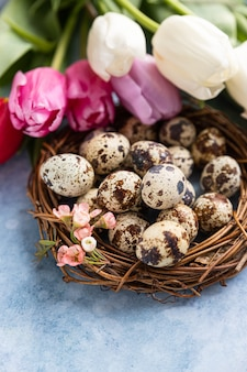 Beautiful colorful tulips with quail eggs in wreath