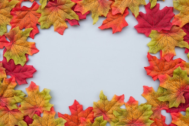 Beautiful composition of autumn leaves on light blue background with copy space