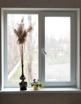 Красивая композиция из цветка и камыша в вазе, стоящей на окне в квартире