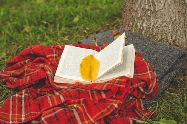 Beautiful composition with cup of tea and old book. rainy day, summer or autumn season. vintage style.