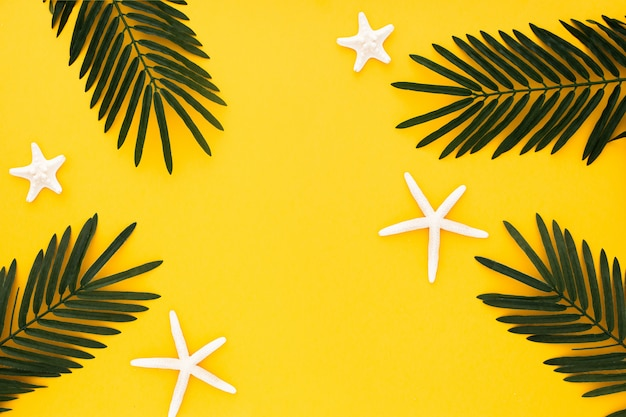 Beautiful composition with palm leaves and starfishes on yellow background