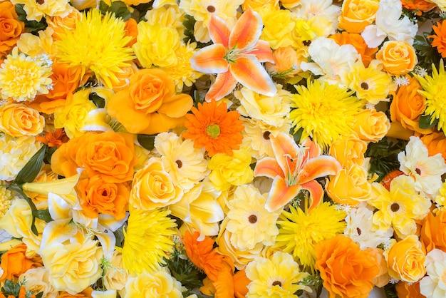 Красивые цветы космоса, цветущие в саду