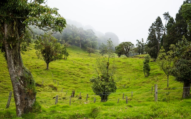 Beautiful costa rican countryside with rich green hills