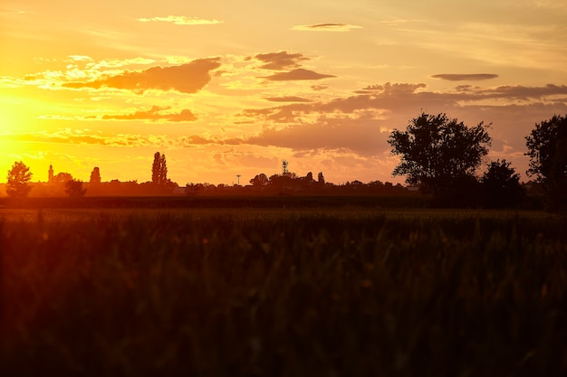 Beautiful countryside lanscape in northen italy at sunset