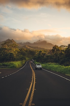 Campagna verdeggiante strada e boschi