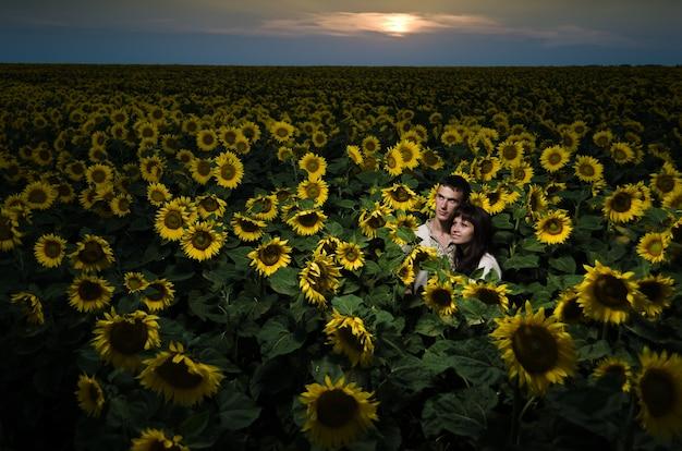 Красивые пары, с удовольствием в поля подсолнухов