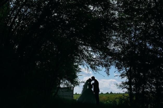 フィールドの森林伐採を背景に森の中で美しいカップル