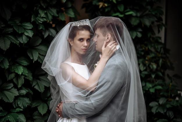 베일 아래 포옹 정원에서 아름 다운 커플 남자 신랑과 여자 신부 신혼 부부