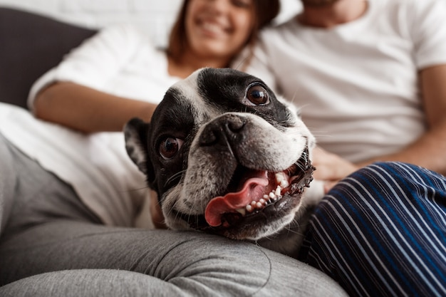Beautiful couple resting on sofa with dog