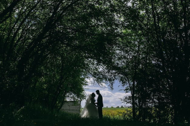 Beautiful couple in the woods on a background of forest clearance on the field