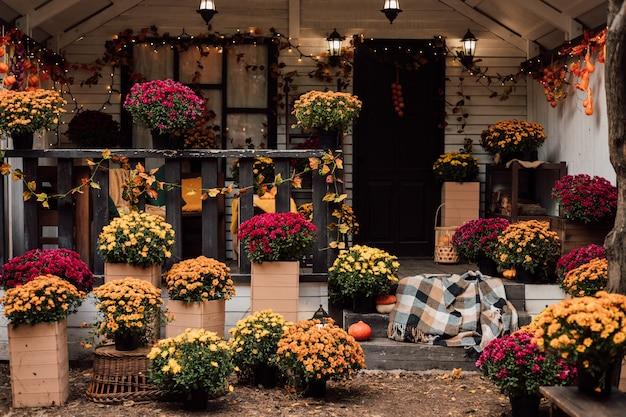 Красивый двор возле дома с хризантемами и тыквами