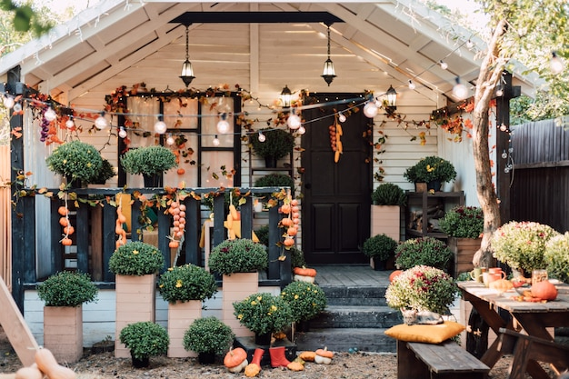 Beautiful cozy courtyard with autumn flowers vegetables and pumpkins