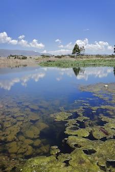 空を映す美しい透き通った池