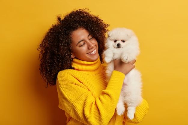 노란색 대형 스웨터를 입은 아름다운 곱슬 아프리카 계 미국인 여성, 좋아하는 애완 동물 실내에서 놀고, 행복한 분위기를 가지고 있으며, 멋진 동물을 갖는 것을 자랑스럽게 생각합니다.