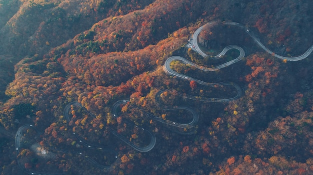 Beautiful curvy street on the nikko mountain, japan. aerial view