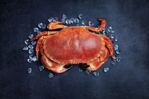 Beautiful cut out crab cake on a black table