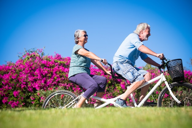 Beautiful and cute couple of mature and old woman and man riding together a double bike in a green park with pink flowers at the background. active senior having fun with tandem