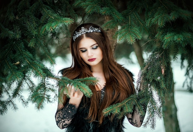Beautiful dark queen. gothic princess with a crown in a long dark dress.