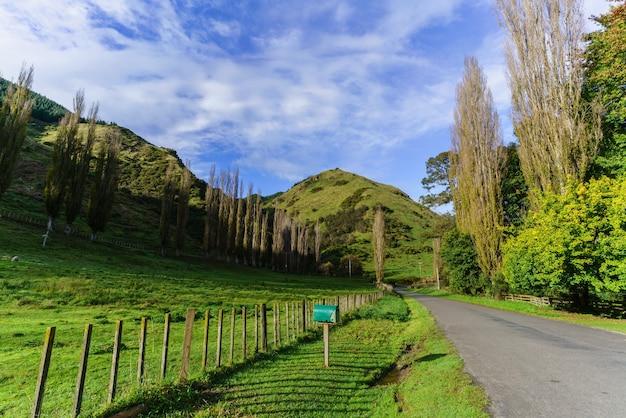 ニュージーランドの北島、田園地帯の美しい日