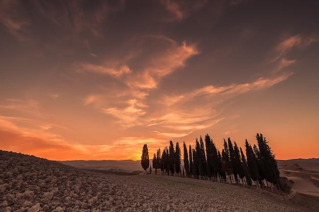 Красивый закат с кипарисами и величественным небом, тоскана, италия