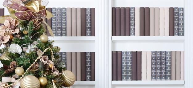 A beautiful decorated christmas tree on the wall of a bookshelf with many books of different colors