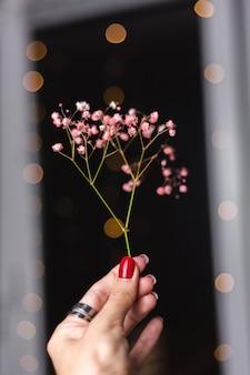 Bella decorazione simpatici piccoli fiori secchi colorati su nero scuro, carta da parati.