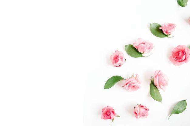 分離された美しい繊細なバラのつぼみ