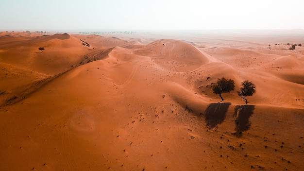 Beautiful desert with sand dunes on a sunny day