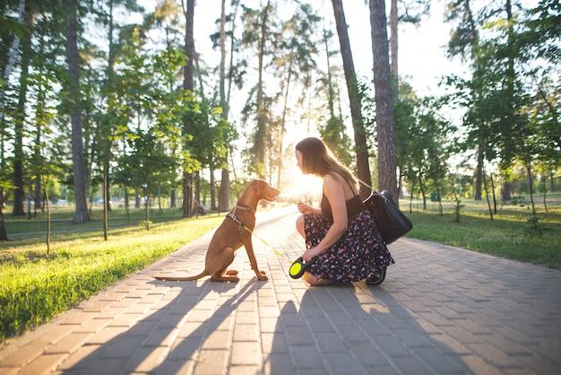 Красивая собака и красивая женщина, сидя на аллее в парке заката.