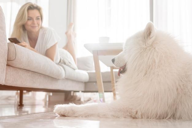 家の中の美しい犬と女性