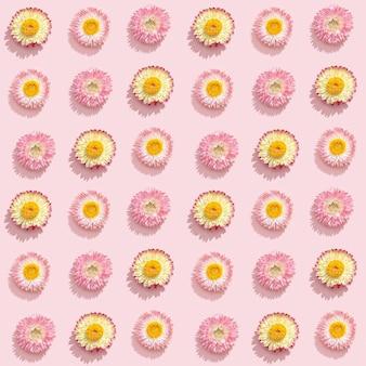 Красивые засушенные цветы, маленькие соцветия на нежно-розовом. естественный цветочный фон, концепция праздника романтики.