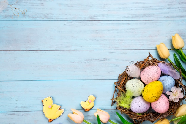 Beautiful e tulips with colorful eggs in nest on blue wooden background